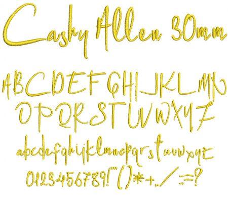 Cashy Allen 30mm Font