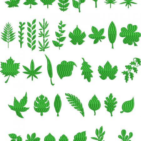 LeafShapesFS